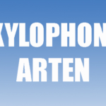 Xylophon-Arten Teaserbild